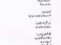 poet 40