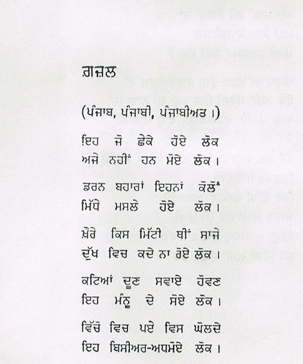 poet 113
