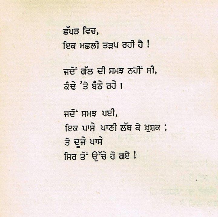 poet 41